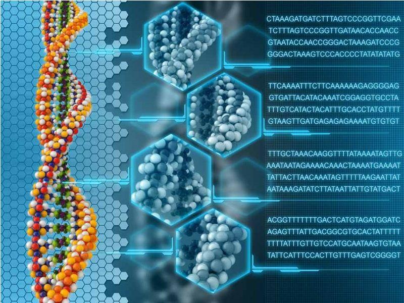 [终极存储设备]一克DNA可存储几十亿GB数据插图
