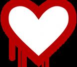 Heartbleed bug:OpenSSL的程序员到底犯了什么错误?插图