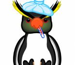 Linux安全漏洞