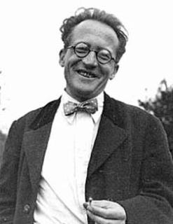 奥地利理论物理学家、量子力学的奠基人埃尔温·薛定谔