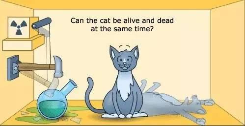 空与非空 - 数据库中也有薛定谔的猫?