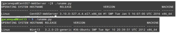 Python 脚本编程