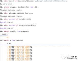 Oracle12.2体系架构图:Filesystem+Multitenant插图(3)