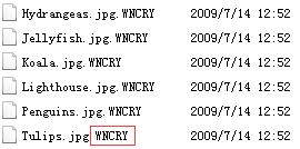 """安天方案:新型""""蠕虫""""式勒索软件""""wannacry""""的应对措施插图(2)"""