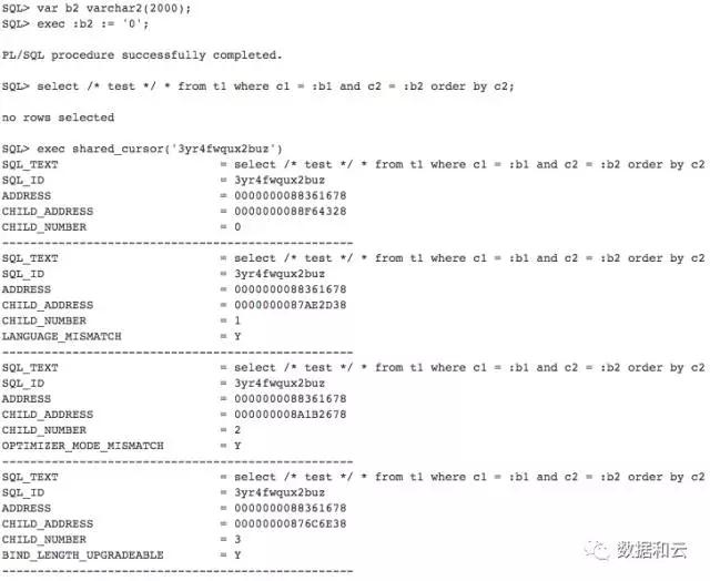 Oracle 数据库之最:你见过最高的 SQL Version 是多少?插图(4)