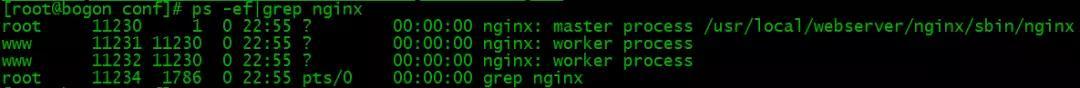 给小白的 Nginx 30分钟入门指南插图(20)