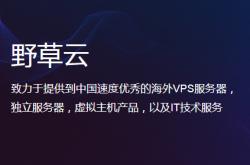 野草云怎么样?推荐!香港优质IDC服务商插图