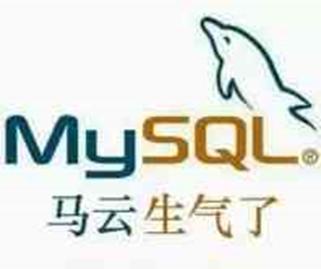 Mysql安装插图