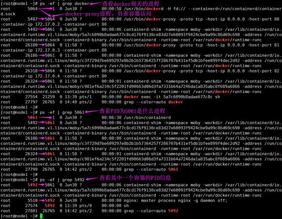 Docker-名称空间Namespace技术插图(4)