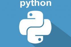 使用Python进行TCP端口扫描插图