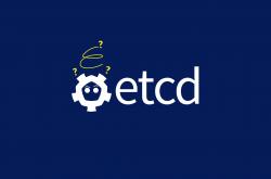 快速搭建高可用 ETCD 集群插图