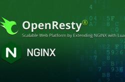 OpenResty搭建高性能服务端插图